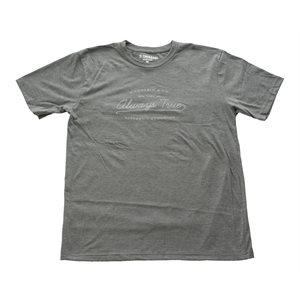 D'ADDARIO - Always True T-Shirt Gray - Large